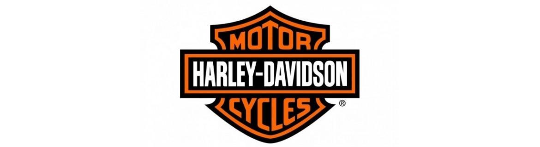 Vendita ricambi e accessori per Moto Harley Davidson